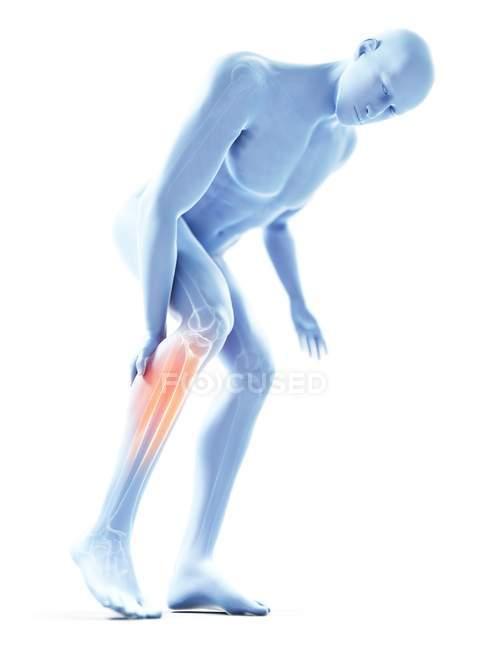 3d renderizado ilustración de silueta azul del hombre con doloroso becerro . - foto de stock