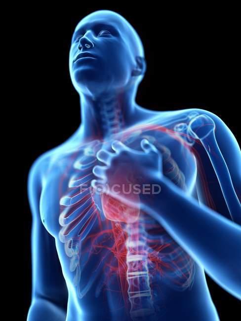3d renderizado ilustración de silueta azul del hombre con dolor en el pecho . - foto de stock