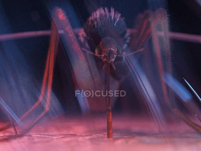 Illustration couleur de pest de moustiques sur la peau. — Photo de stock
