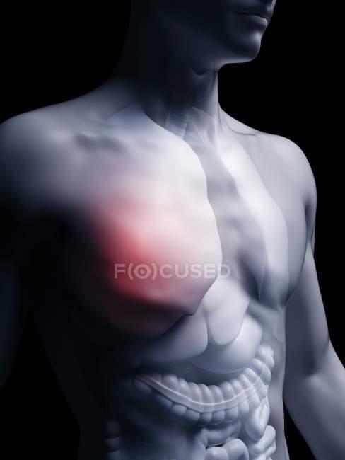Illustration du poumon humain en silhouette corporelle . — Photo de stock