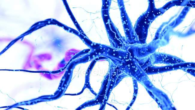 Ilustración de color abstracto de la célula nerviosa humana azul sobre fondo claro . - foto de stock