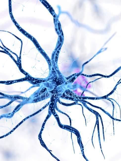 Illustrazione digitale della cellula nervosa umana blu . — Foto stock