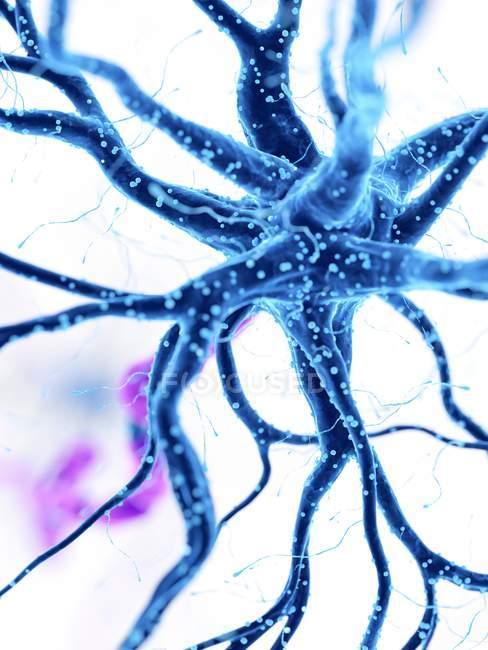Illustration numérique des cellules nerveuses humaines bleues . — Photo de stock