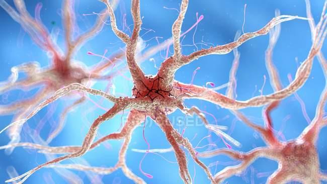 Illustration de cellules nerveuses humaines saines . — Photo de stock