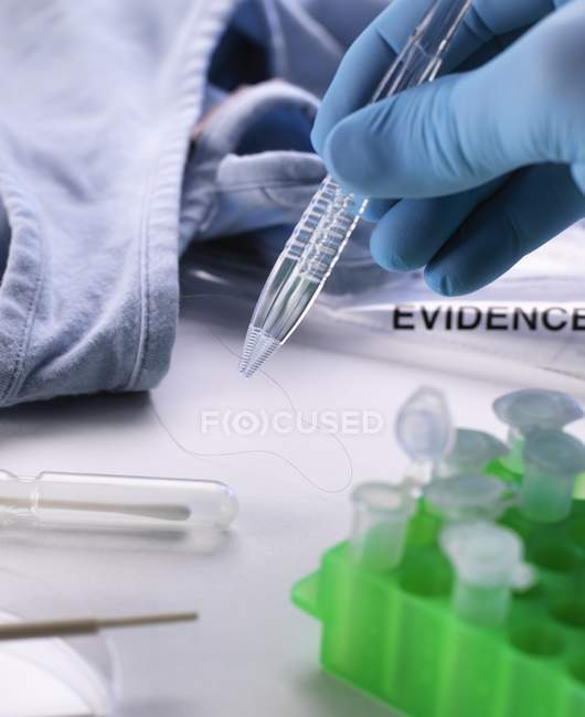 Forensic scientist taking hair specimen for DNA testing from clothing from crime scene. — Stock Photo