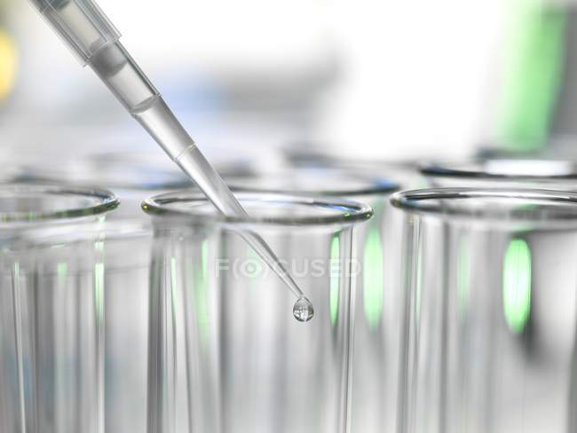 Close-up of pipetting sample into row of test tubes during experiment in laboratory. — Stock Photo