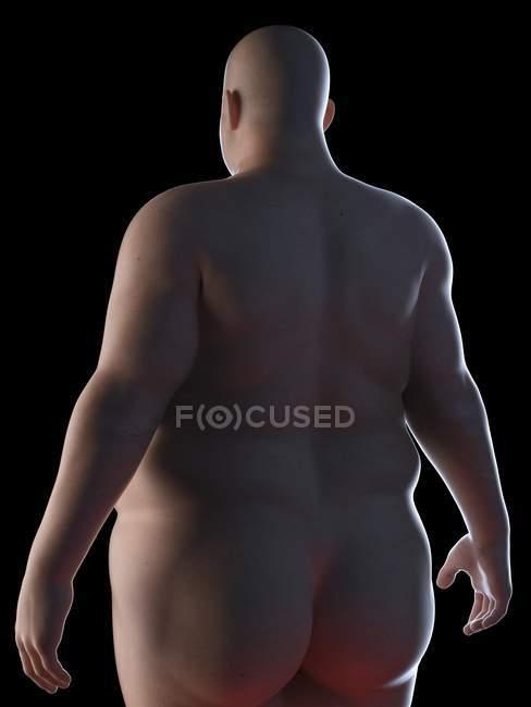 Vista trasera ilustración de la silueta del hombre obeso . - foto de stock