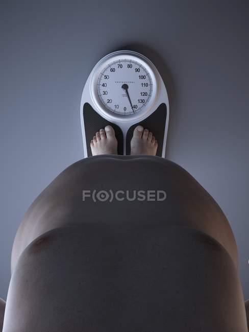 Ilustración de la sección baja del hombre obeso en la escala de peso . - foto de stock