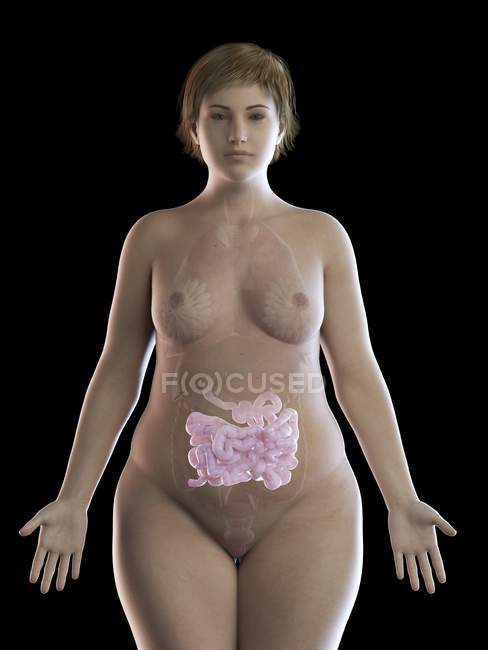 Illustration of overweight woman with visible intestine on black background. — Stock Photo