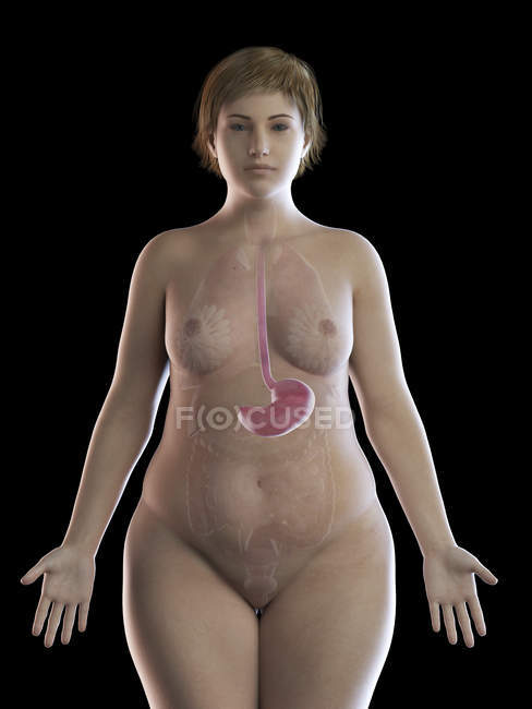 Illustration of overweight woman with visible stomach on black background. — Stock Photo