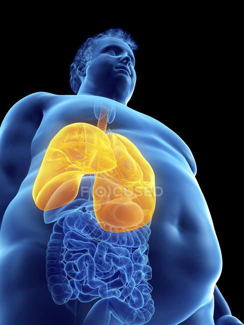 Ilustração da silhueta do homem obeso com pulmões visíveis . — Fotografia de Stock