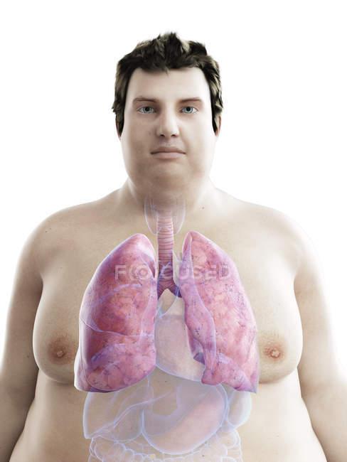 Ilustração da figura do homem obeso com pulmões visíveis . — Fotografia de Stock