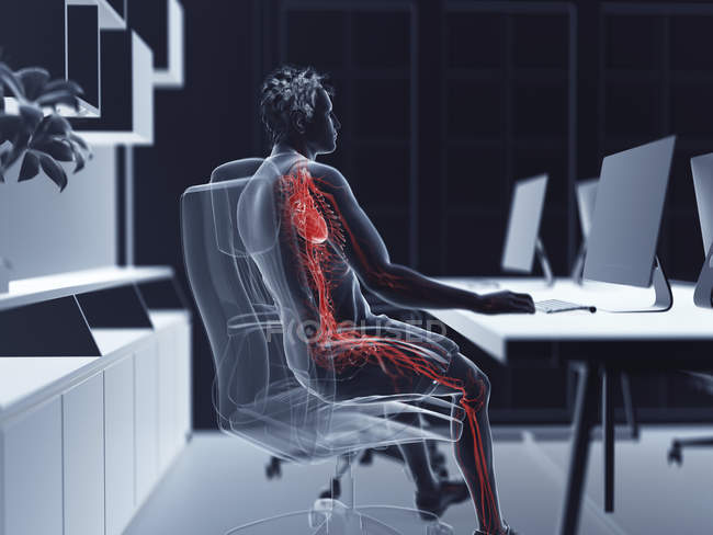 Illustration of male office worker vascular system. — Stock Photo