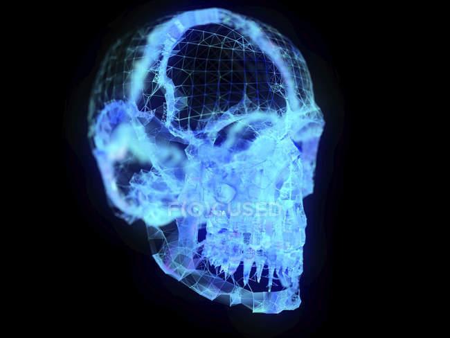 Illustration of abstract plexus skull on black background. — Stock Photo