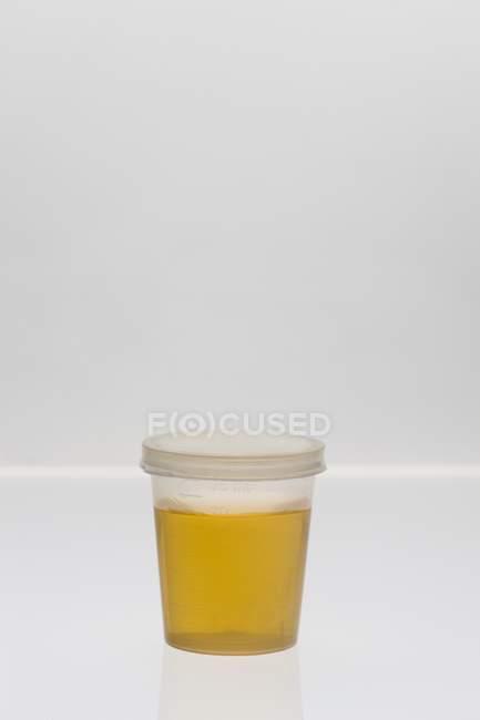Образец мочи в пластиковой чашке на обычном фоне . — стоковое фото