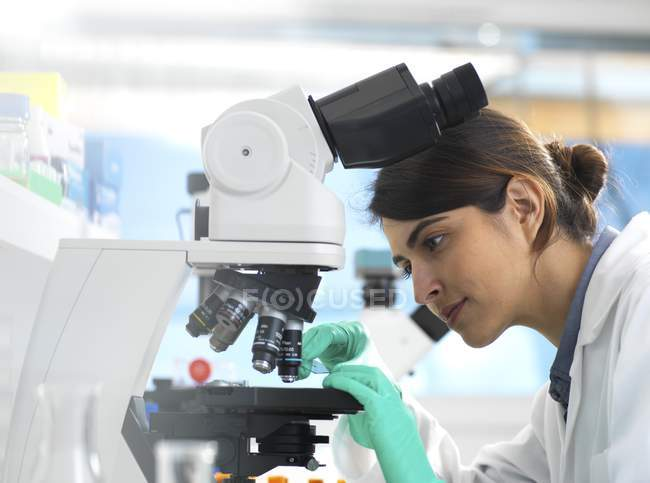 Scientist viewing medical sample on glass slide under microscope in laboratory. — Stock Photo