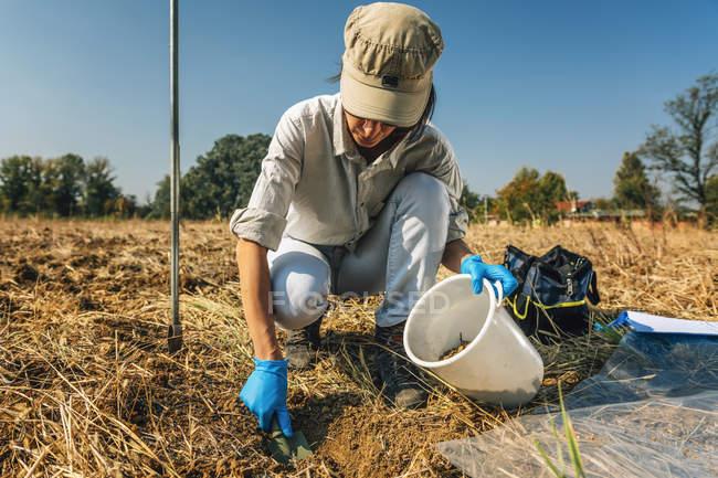 Female agronomist taking soil sample for fertility analysis. — Stock Photo
