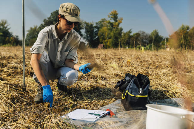 Female agronomist measuring soil temperature with thermometer in field. — Stock Photo