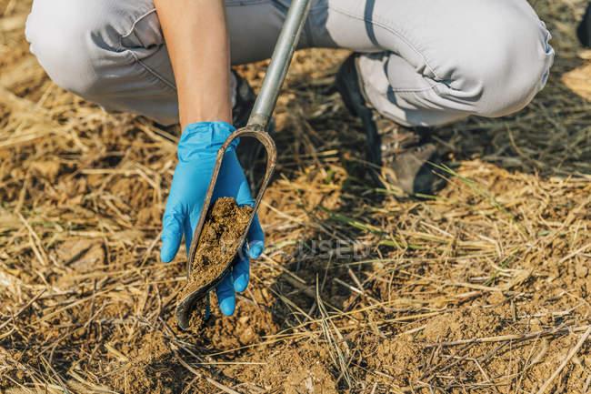 Female agronomist taking sample with soil probe sampler. — Stock Photo