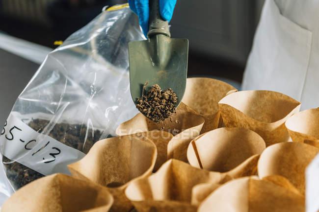 Main de biologiste avec gant de protection tenant la truelle avec le sol au-dessus des échantillons séparés dans des conteneurs . — Photo de stock