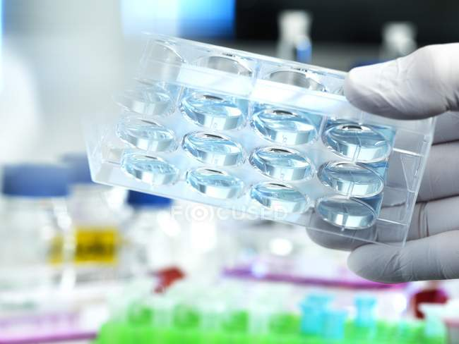 Scientist holding samples in multi well plate during experiment in laboratory. — Stock Photo