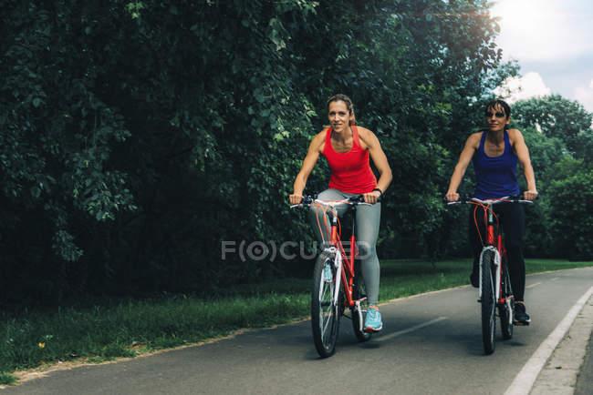 Две женщины вместе ездят на велосипедах по парковой дороге . — стоковое фото