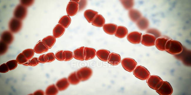 Digital illustration of red colored Streptococcus thermophilus bacteria for dairy food industry. — Stock Photo