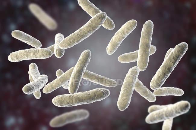 Batteri probiotici nel normale microbiota intestinale, illustrazione digitale . — Foto stock