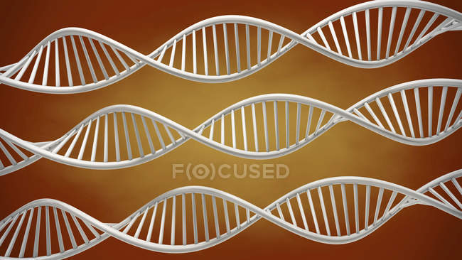 Helical DNA molecules, digital illustration. — Stock Photo
