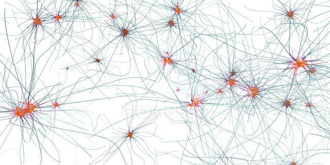 Abstract 3d illustration of nerve cells with connections in human nervous system. — Stock Photo