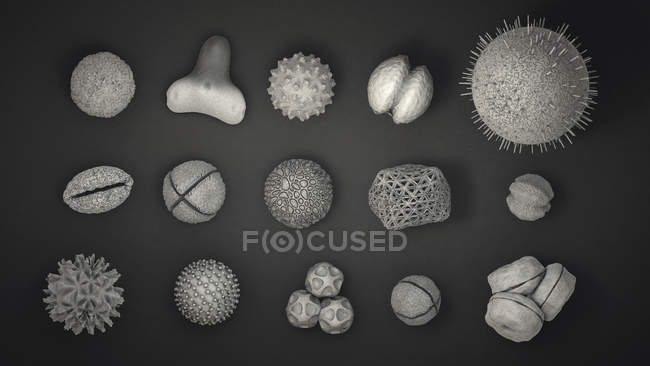 3d illustration of variety of different pollen grains. — Stock Photo