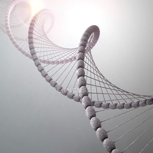 DNA molecule on gray background, conceptual illustration. — Stock Photo