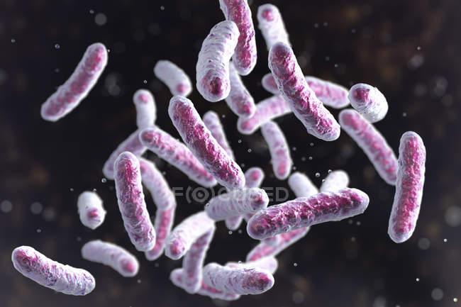 Illustrazione digitale della colonia batterica a forma di asta . — Foto stock