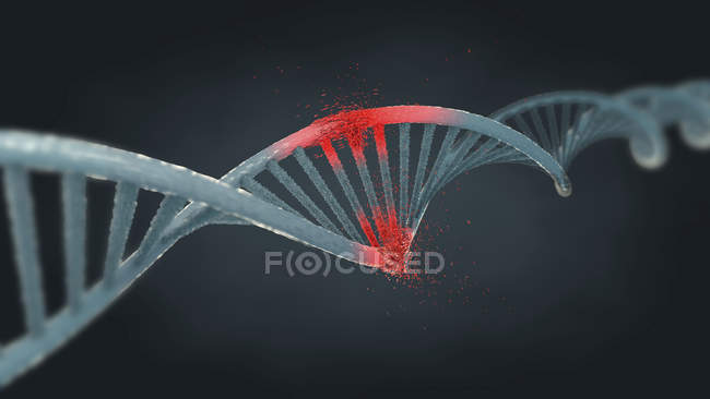 Illustration of damaged DNA strand on gray background. — Stock Photo
