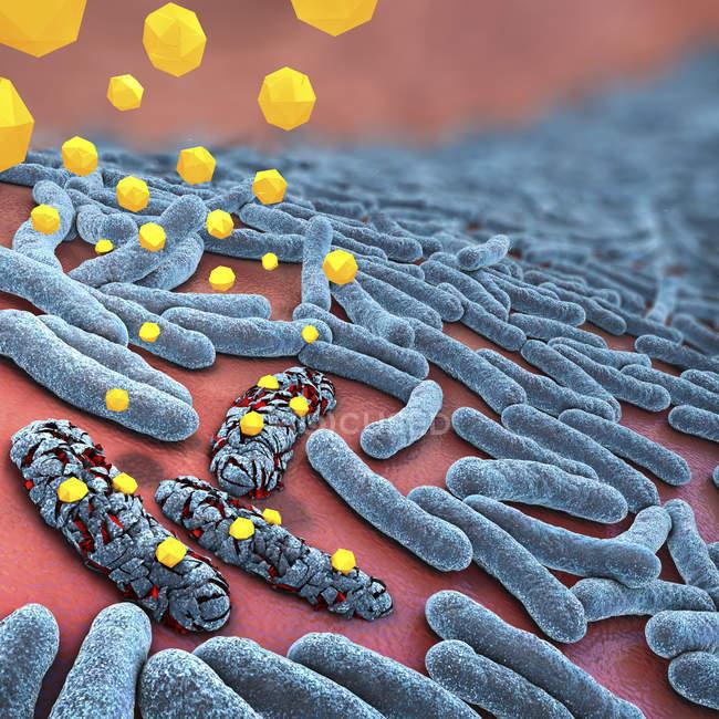 3D иллюстрации антибиотиков, уничтожающим бактерии. — стоковое фото