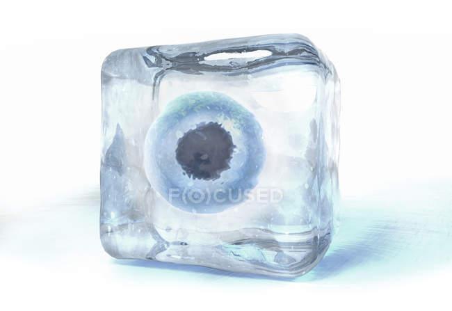 3D ілюстрація Яєчні клітини заморожені в кубик льоду. — стокове фото