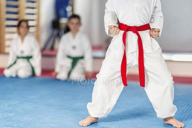 Мальчик с красным поясом в позе в классе тхэквондо . — стоковое фото
