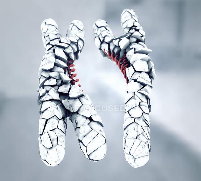 Ilustración 3d de cromosomas X y Y rotos o defectuosos de color blanco . - foto de stock