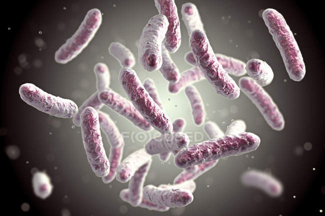 Digital illustration of rod-shaped bacteria colony. — Stock Photo