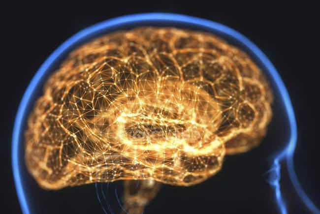 Светящийся человеческий мозг, цифровая иллюстрация. — стоковое фото