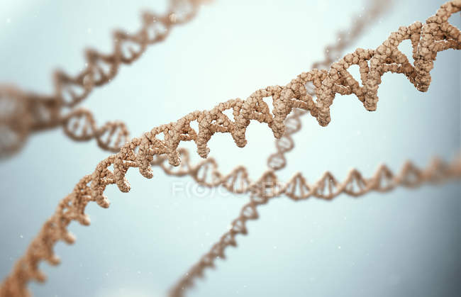 DNA strands, digital illustration. — Stock Photo