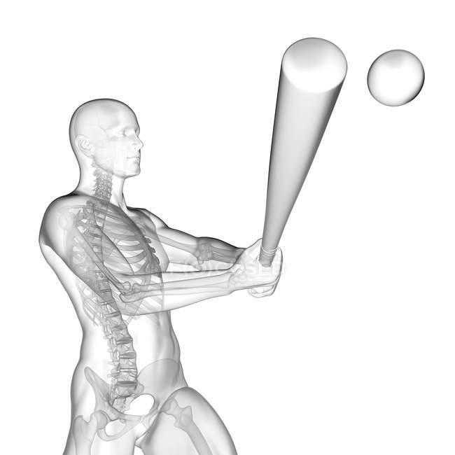 Silhouette humaine utilisant la batte de base-ball avec la structure squelettique visible, illustration numérique. — Photo de stock