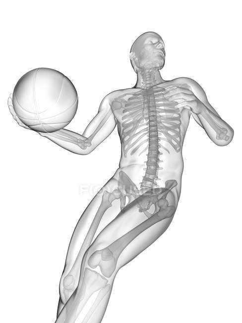 Silhouette humaine jouant au basket-ball avec la structure squelettique visible, illustration numérique. — Photo de stock