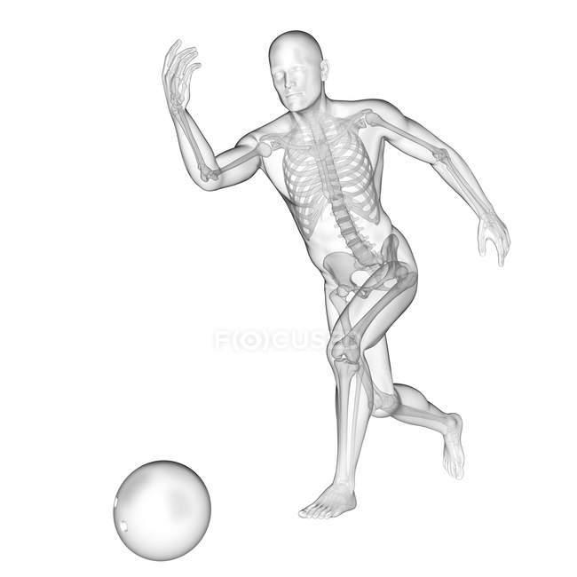 Bowling de silhouette humaine avec la structure squelettique visible, illustration numérique. — Photo de stock