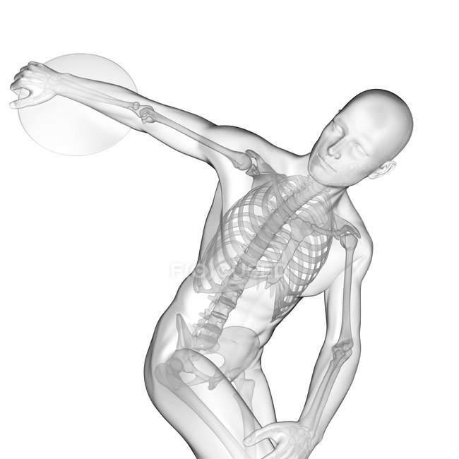 Système squelettique de lanceur de disque, illustration numérique. — Photo de stock