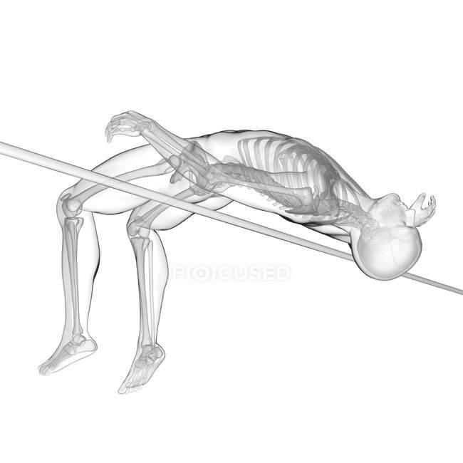 Système squelettique de saut en hauteur, illustration numérique. — Photo de stock