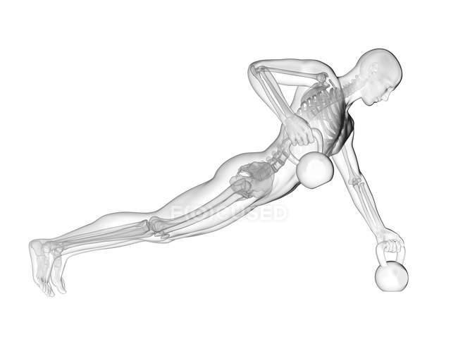 Cloches de bouilloire de levage de silhouette humaine avec le système squelettique visible, illustration numérique. — Photo de stock