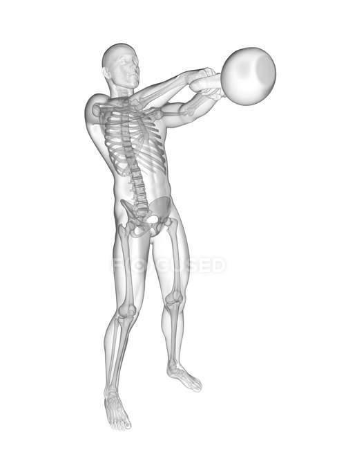 Cloche de bouilloire oscillante de silhouette humaine avec le système squelettique visible, illustration numérique. — Photo de stock