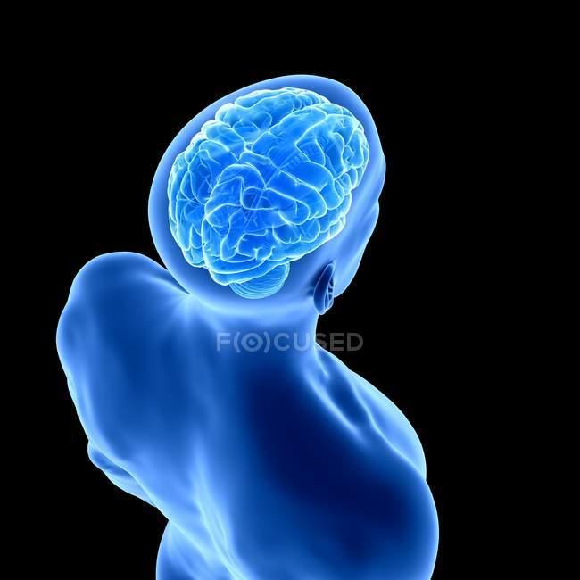 Silhouette humaine bleue avec le cerveau visible sur le fond noir, illustration numérique. — Photo de stock