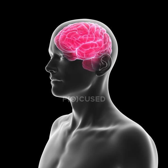 Silhouette humaine avec le cerveau illuminé rose sur le fond noir, illustration numérique. — Photo de stock